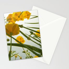 Looking Through Yellow Daisies to the Sky Stationery Cards