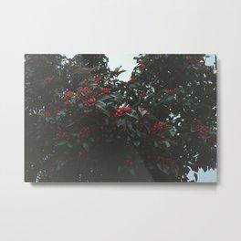 Autumn Berry Metal Print