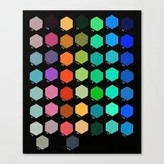 Darth Color Chart Canvas Print