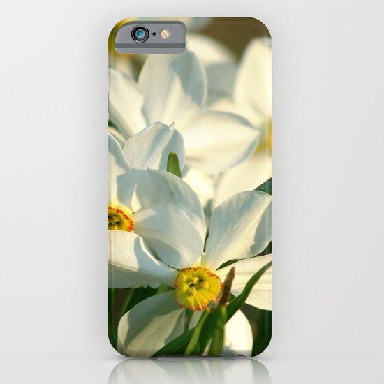Cascade iPhone & iPod Case