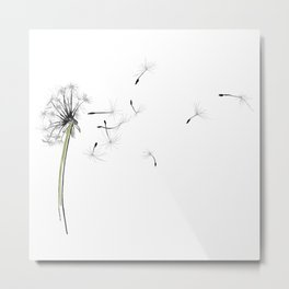 dandelion on the fish - flowers in the breeze Metal Print