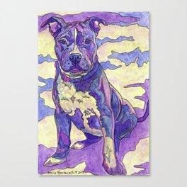 Rainbow Blue Nose Pitbull Canvas Print
