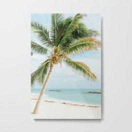 Tropical Palm Tree Metal Print