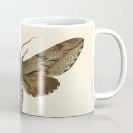 Antique Moth Lithograph Coffee Mug