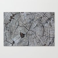 tree rings Canvas Prints featuring Rings by Elizabeth Velasquez