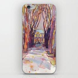 Бульвар Гагарина iPhone Skin