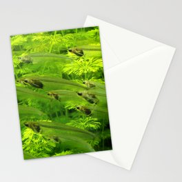 Green Fishes Stationery Cards