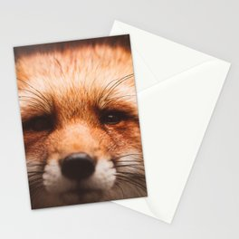 Red fox 2 Stationery Cards