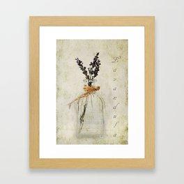 Lavandula / Lavander Framed Art Print