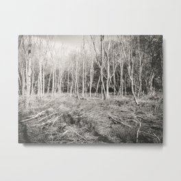The Lonely Woods Metal Print