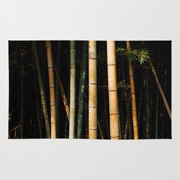 Bamboo Spectrum Rug