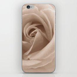 Rose in sepia iPhone Skin