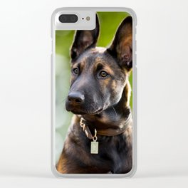 Cute Malinois - shephard puppy Clear iPhone Case