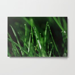 Luminous Green Metal Print