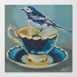pied-wagtail and tea cup Canvas Print