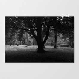 Cong Abbey - Ireland Canvas Print
