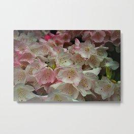 Sakura Grove Metal Print