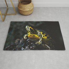 Swamp Turtle Rug