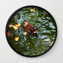 Duck in autumn Wall Clock