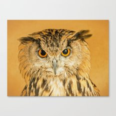 OWL RIGHT ON THE NIGHT Canvas Print