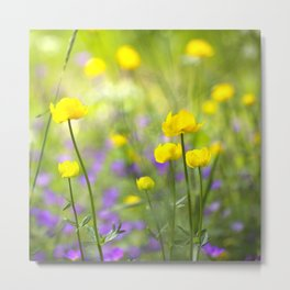Wonderful Yellow Globeflowers #decor #society6 Metal Print