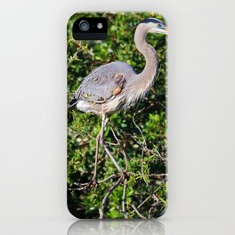 Living with Purpose iPhone Case