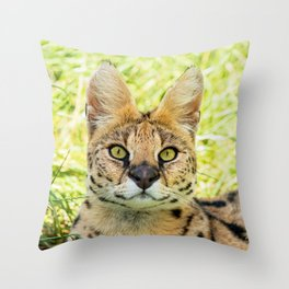 SERVAL BEAUTY Throw Pillow