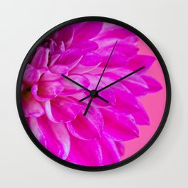 Macro image of the flower dahlia on pink background Wall Clock