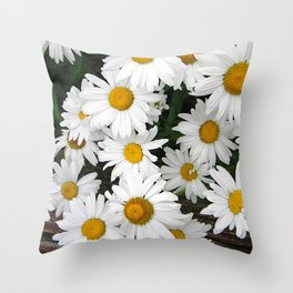 Daisy Blooms Throw Pillow
