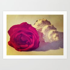 The red shell Art Print