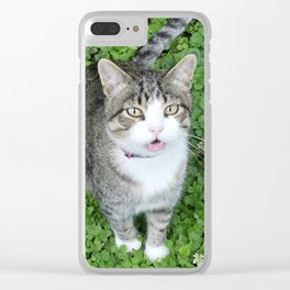 Cat in Clover Clear iPhone Case