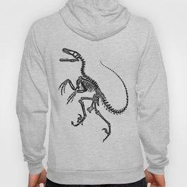 Dino Fossil Hoody