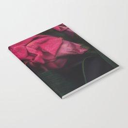 Seja II Notebook