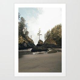 Dead Man's Cove Art Print