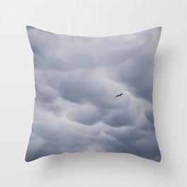 Flight Through the Storm Throw Pillow