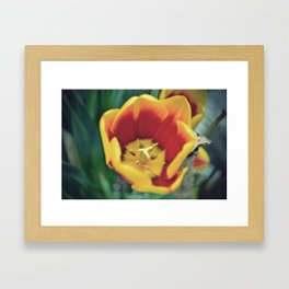 the Innards of a Flower Framed Art Print