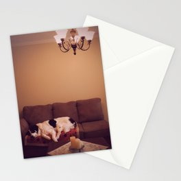 Dog in Luxury Stationery Cards
