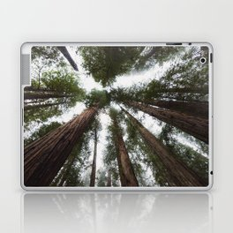 Redwood Portal - nature photography Laptop & iPad Skin