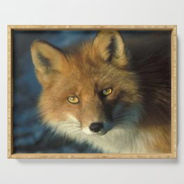 Red Fox in the Wild Serving Tray
