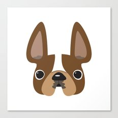 Another Pied Frenchie - Brown Canvas Print
