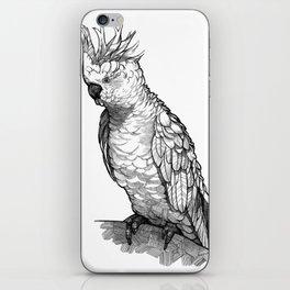 Cockatoo iPhone Skin