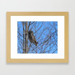 Who goes there Framed Art Print