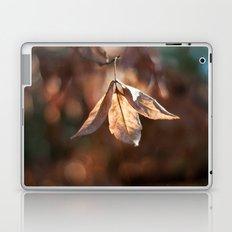 Late Autumn Light Laptop & iPad Skin