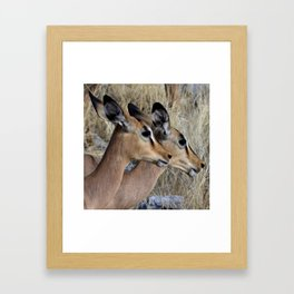 Impala Double Framed Art Print