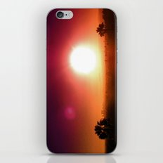 Echo Park Series #8 iPhone & iPod Skin