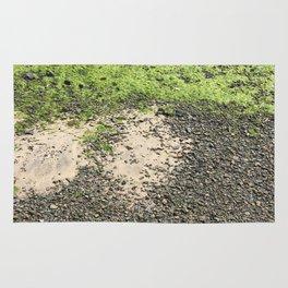 Coastal Algae Rug