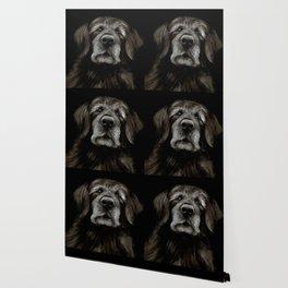 Dog 1 Wallpaper