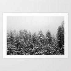 Black and White Snowy Pine trees Art Print