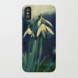 Key of Spring iPhone Case