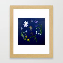 Transient - winter blooms Framed Art Print